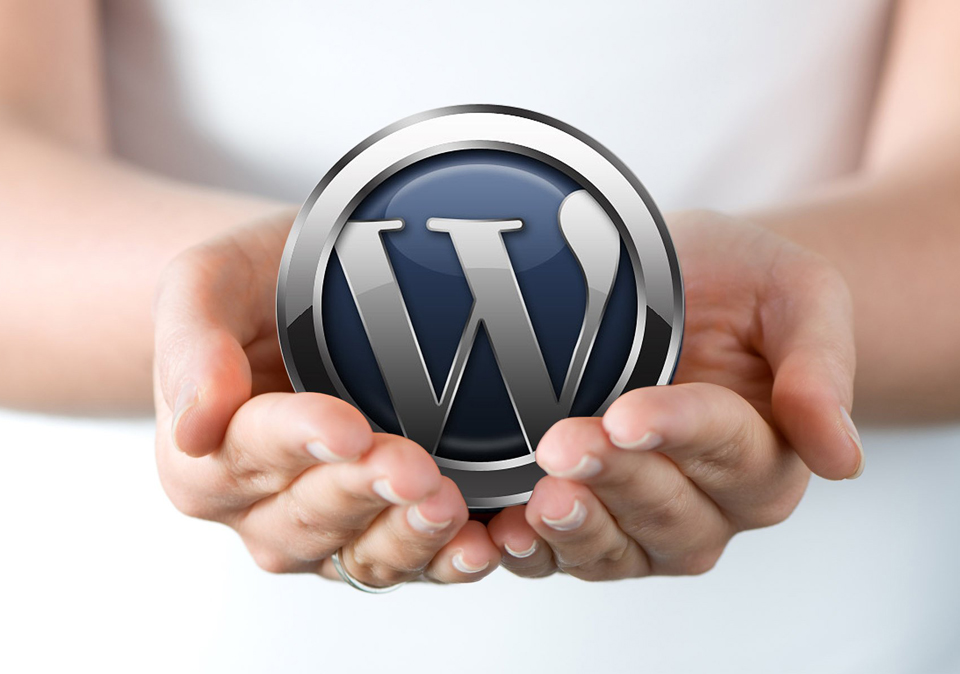 Wordpress – The Professional Tools for Website Design